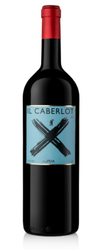Il Caberlot IGT Toscana 2015  - Magnum